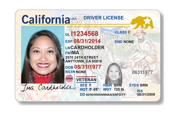 CA Driver's License